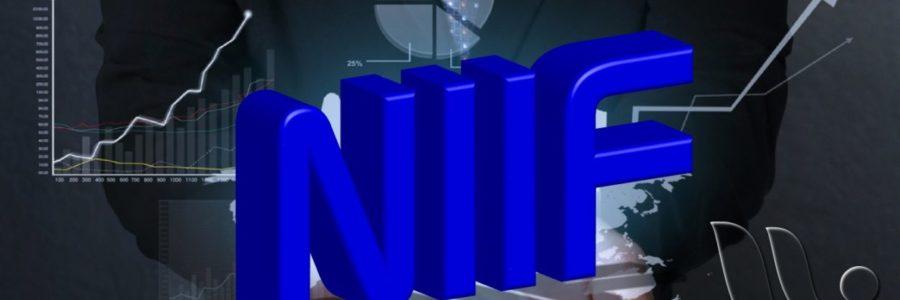 Qué son las NIIIF?